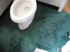 Why You Shouldn't Put Carpet in the Bathroom