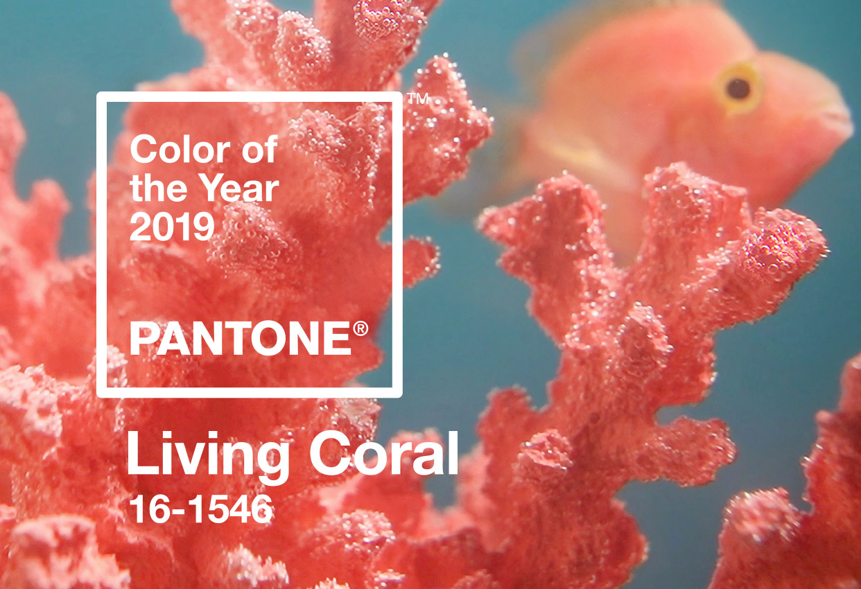 bathroom design trends of 2019 pantone color of the year living coral